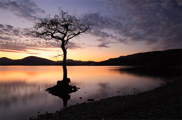 Loch Lomond Sunset Canvas print by Scottish Landscape and Wildlife Canvas Print