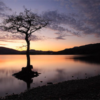 Buy canvas prints of Loch Lomond Sunset by Scottish Landscape and Wildlife Canvas Print