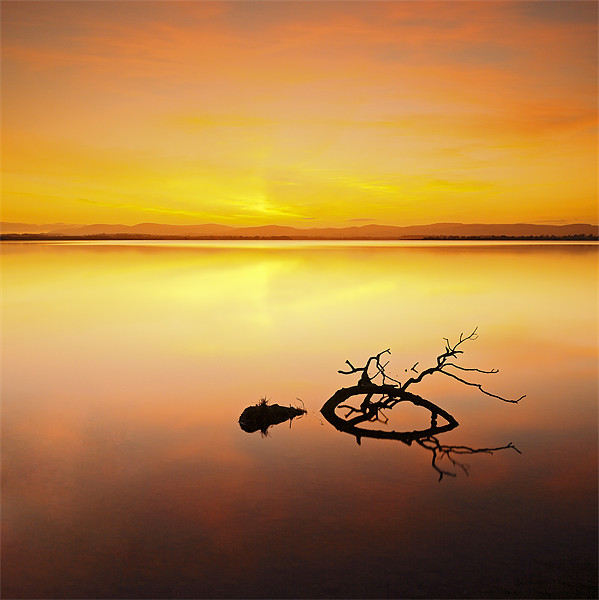 Loch Leven Sunset Canvas print by Scottish Landscape and Wildlife Canvas Print