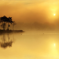 Buy canvas prints of Loch Ard morning glow by Scottish Landscape and Wildlife Canvas Print