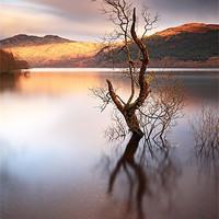 Buy canvas prints of Loch Lomond by Scottish Landscape and Wildlife Canvas Print