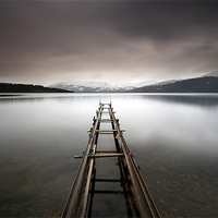 Buy canvas prints of Loch Lomond by Scottish Landscape and Wildlife Canvas Print