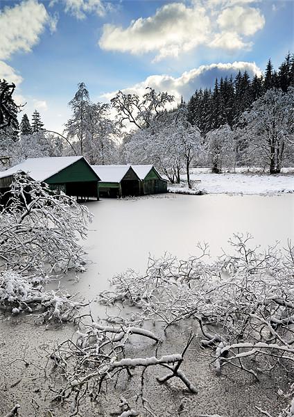Loch Ard Winter Scene Canvas Print by Scottish Landscape and Wildlife Canvas Print