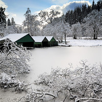 Buy canvas prints of Loch Ard Winter Scene by Scottish Landscape and Wildlife Canvas Print