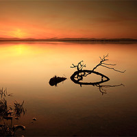 Buy canvas prints of Loch leven Sunset by Scottish Landscape and Wildlife Canvas Print