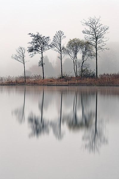 Loch Ard Canvas print by Scottish Landscape and Wildlife Canvas Print