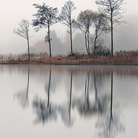 Buy canvas prints of Loch Ard by Scottish Landscape and Wildlife Canvas Print