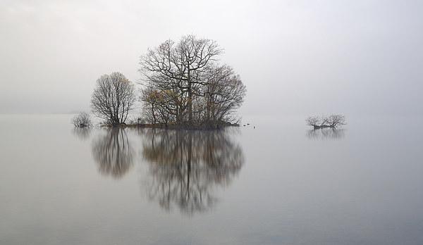 Loch Lomond Mist Canvas print by Scottish Landscape and Wildlife Canvas Print