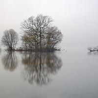 Buy canvas prints of Loch Lomond Mist by Scottish Landscape and Wildlife Canvas Print