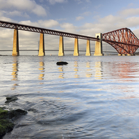 Buy canvas prints of Forth Railway Bridge by Scottish Landscape and Wildlife Canvas Print