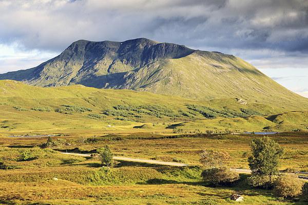 Rannoch moor Canvas Print by Scottish Landscape and Wildlife Canvas Print