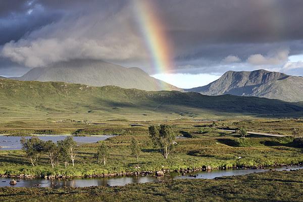 Rannoch Moor Rainbow Canvas Print by Scottish Landscape and Wildlife Canvas Print