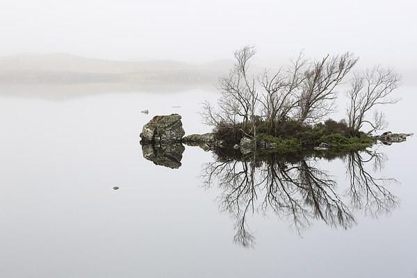 Rannoch Moor Mist Canvas Print by Scottish Landscape and Wildlife Canvas Print