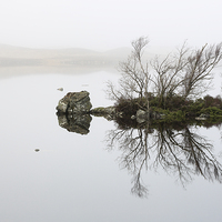Buy canvas prints of  Rannoch Moor Mist by Scottish Landscape and Wildlife Canvas Print