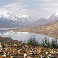Buy canvas prints of  Highland View by Scottish Landscape and Wildlife Canvas Print