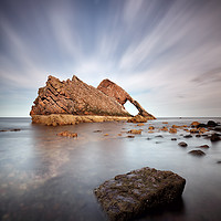 Buy canvas prints of Bow Fiddle by Grant Glendinning