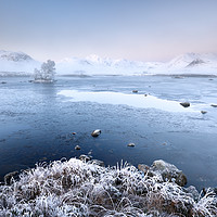 Buy canvas prints of Black Mount Misty Winter Sunrise by Grant Glendinning