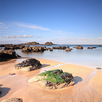 Buy canvas prints of Yellowcraigs by Maria Gaellman