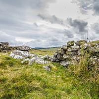 Buy canvas prints of Devon stone wall by lee dawe