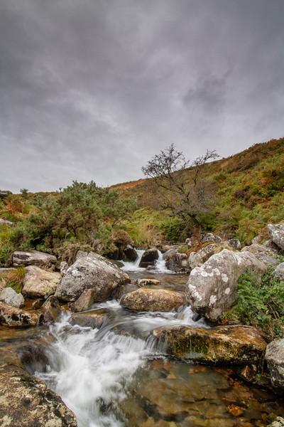 The River Lyd, Dartmoor Canvas print by lee dawe