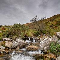 Buy canvas prints of The River Lyd, Dartmoor by lee dawe
