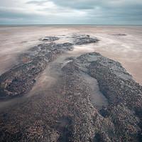 Buy canvas prints of Dawlish Warren Rocks by lee dawe