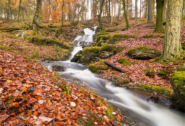 Elan Valley Autumn Waterfall Canvas print by Ian Collins
