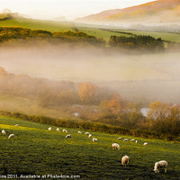Buy canvas prints of Elan Valley Mist by Ian Collins