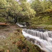 Buy canvas prints of  Autumn's best Seat by Ian Collins
