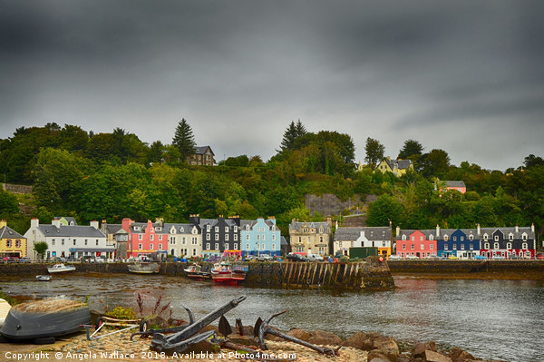 Tobermory and Harbour                  Canvas Print by Angela Wallace