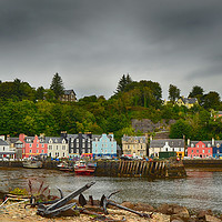 Buy canvas prints of Tobermory and Harbour                  by Angela Wallace
