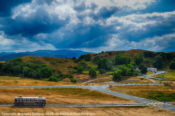 The Great Orme Tramway Canvas print by Angela Wallace