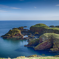 Buy canvas prints of Cliff tops at St Abbs Scotland by Angela Wallace