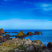 Buy canvas prints of Lichen on the rocks by Angela Wallace