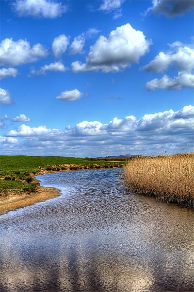 Braunton Marsh Canvas print by Dave Wilkinson  North Devon Photography