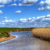 Buy canvas prints of Braunton Marsh by Dave Wilkinson  North Devon Photography