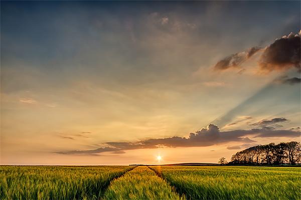 North Devon Sunset Canvas print by Dave Wilkinson  North Devon Photography