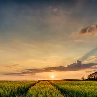 Buy canvas prints of North Devon Sunset by Dave Wilkinson  North Devon Photography
