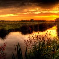 Buy canvas prints of Braunton Marsh sunset by Dave Wilkinson  North Devon Photography