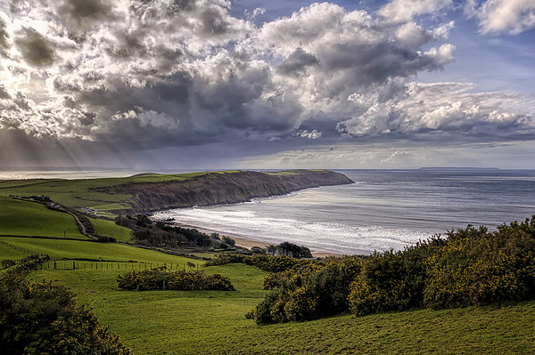 Baggy Point Canvas print by Dave Wilkinson  North Devon Photography
