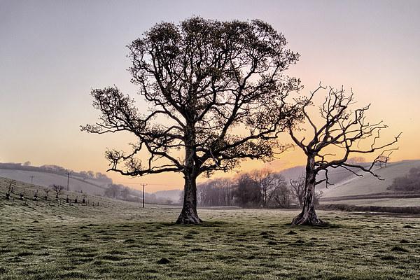North Devon Sunrise Canvas print by Dave Wilkinson  North Devon Photography