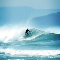 Buy canvas prints of Surfing  by Liz Ward