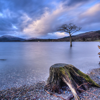 Buy canvas prints of Loch Lomond by Paul Messenger