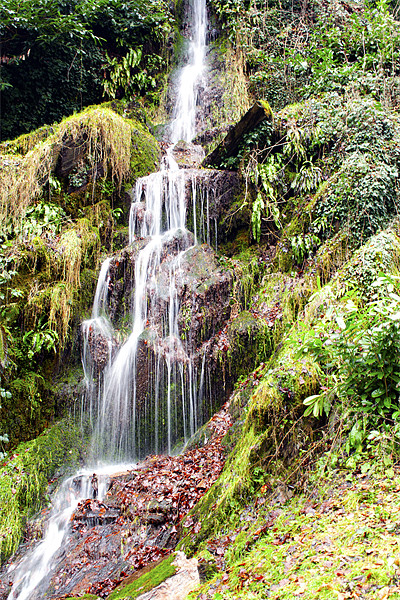 hestercombe Falls Canvas print by DSLR Creations
