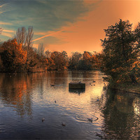 Buy canvas prints of Autumn evening over the lake by DSLR Creations