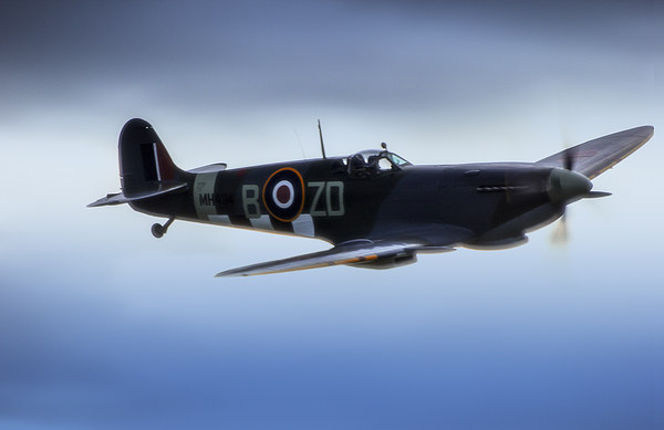 Spitfire in Flight Canvas Print by DSLR Creations