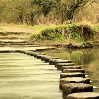 Buy canvas prints of River Mole's stepping stones by Sara Messenger