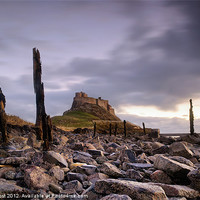 Buy canvas prints of Lindisfarne Castle Sunrise by Chris Frost
