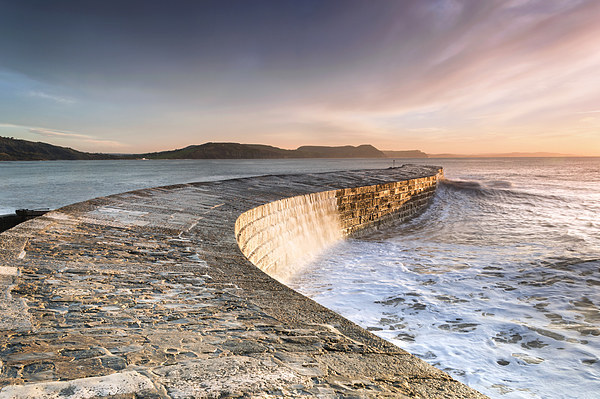 Sunkissed Cobb at Lyme Regis Framed Mounted Print by Chris Frost