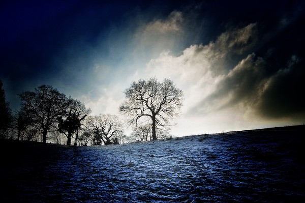 Dramatic frost Canvas print by Rachael Jackson